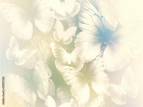 Fototapeta abstract background with butterflies
