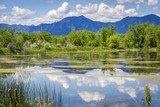 Walden Pond Reflections in Boulder Colorado