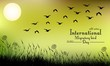 Field of grass and flying birds on night background
