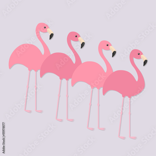 Poster Four pink flamingo set. Exotic tropical bird. Zoo animal collection. Cute cartoon character. Decoration element. Flat design. Light purple background. Isolated.