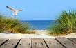 Leinwanddruck Bild - Ostseestrand mit Holzsteg, Dünen und Möwe