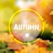 Autumn frame for text with blurred forest background