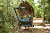 Traditional Bull cart