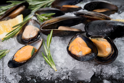 Fresh crude seafood. Mussels in a cockleshell