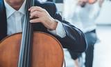 Professional cello player