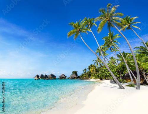 Foto op Aluminium Tropical strand Traumstrand auf einer Insel in den Tropen