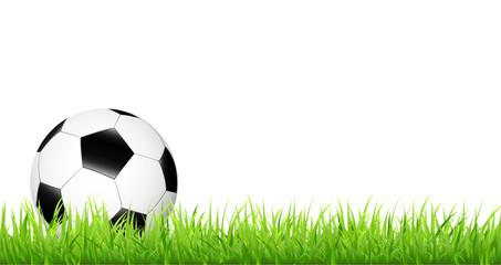 Fußball im grünen Gras