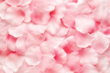 Beautiful delicate pink rose petal background - 112187620