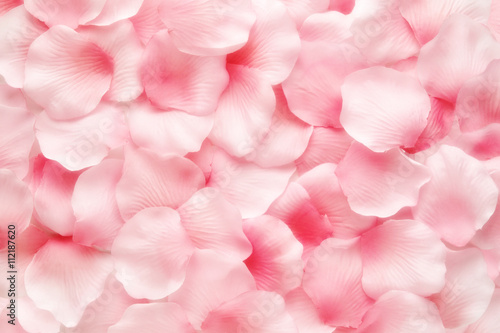Beautiful delicate pink rose petal background
