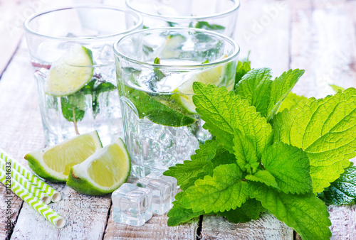 Tuinposter Bestsellers mojito
