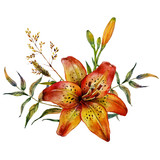 Watercolor Tiger lily
