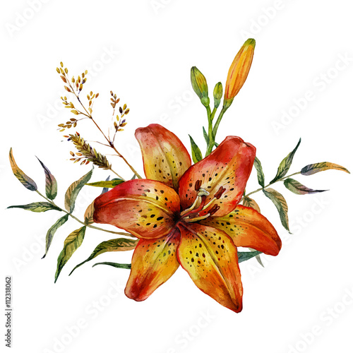 Watercolor Tiger lily - 112318062