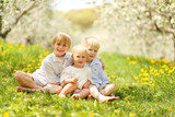 Three Cute Children Relaxing in Flower Meadow and Trees