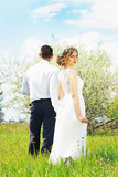 Красивые молодые влюбленные в оливковых деревьях. Свадьба.