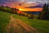 Ścieżka w polskich górach