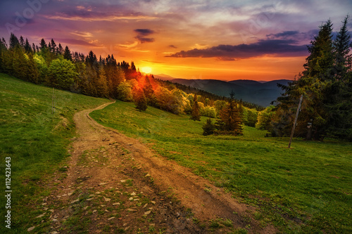 Fotografiet Path in polish mountains