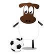 Schaf mit Fußball
