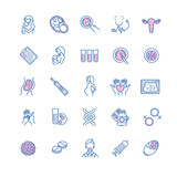 Vector icon set of fertilization, pregnancy and motherhood. Gyne