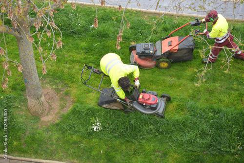 jardineros cortando el césped Плакат