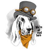 Wizerunek psa  Basset Hound w czapce w stylu steampunk