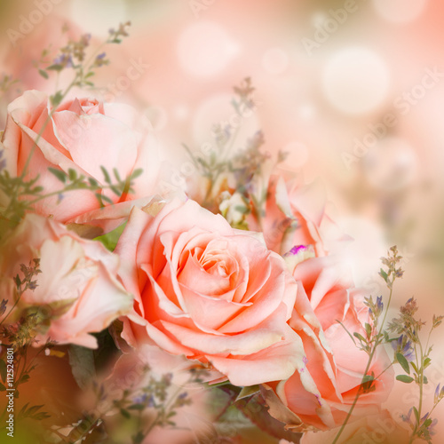 Fototapeta Beautiful roses and butterfly, flower, floral background