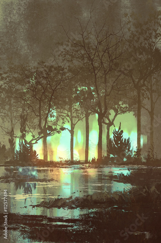 Plakat mysterious dark forest with mystic light at night,illustration