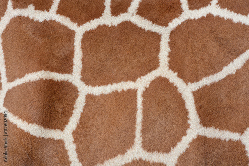 Animal background texture of a giraffe spots pattern Poster