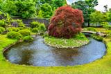 Fototapety Traditional Japanese garden Koko-en in Himeji