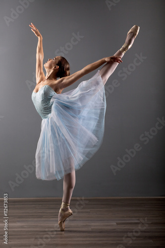 Plagát young ballerina in ballet pose classical dance