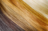 Fototapety Premium hair extension palette with color samples from blonde to