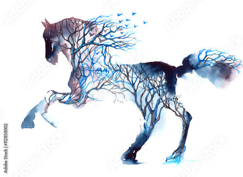Spoed canvasdoek 2cm dik Schilderingen horse