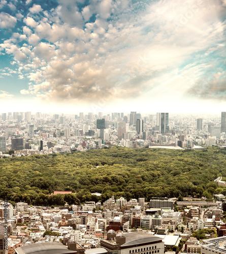 Fototapeta Tokyo, Japan. City park surrounded by skyscrapers