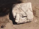 фрагмент статуи  в древнем Карфагене на территории современного Туниса