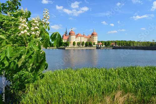 Plakat Schloss Moritzburg, Jagdschloss, Barock, Schlosspark, See, Deutschland, Sachsen