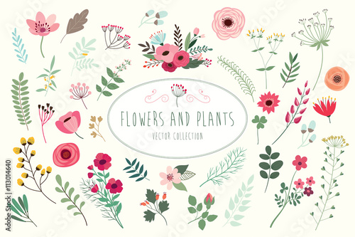 Fridge magnet Flowers and plants. Hand drawn floral collection with flowers and leaves.