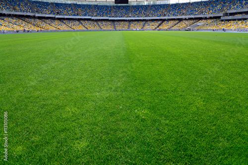green grass on stadium Poster