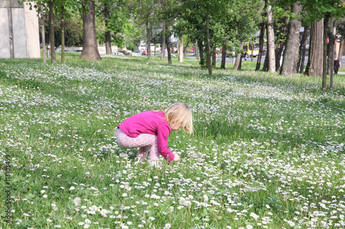 Young girl in dandelion