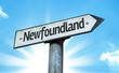 Newfoundland direction sign in a concept image