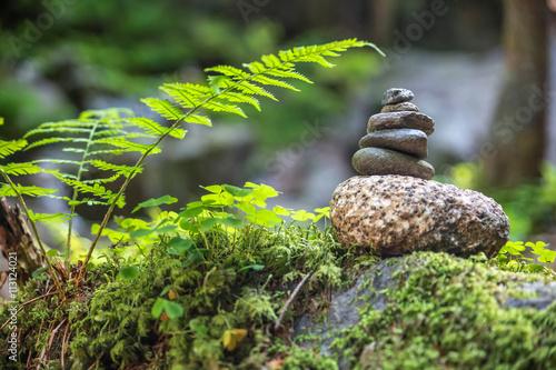 Steinmännchen im Wald Poster
