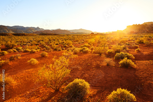 Fotobehang Rood traf. Desert over sunset at Southern Nevada, Valley of Fire State Park, USA