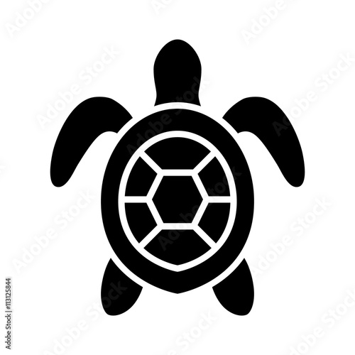 Sea turtle / marine turtle top view flat icon for nature apps and websites