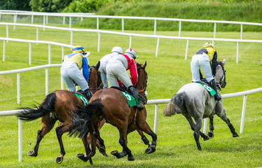 Race horse and jockey taking the lead on the turn of the race track