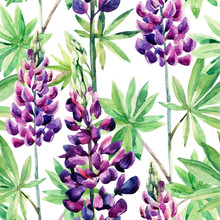 Flowers seamless pattern with watercolor lupines