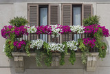 Window with flowers in italy
