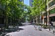新緑��京丸�内�ビジ�ス街