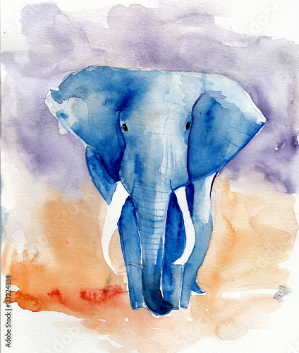 Fototapeta  Blue elephant watercolor illustration