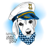 Image Portrait dog in a sailor's cap and in a cravat. Vector illustration.