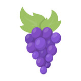 Grapes icon cartoon. Singe fruit icon from the food set.
