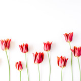 Pink and red tulips and green leaves on white background. Flat lay, top view