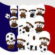 Fußball Schafe in Frankreich